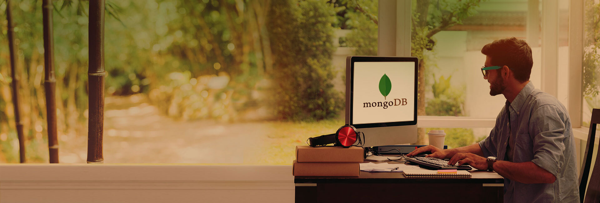 MongoDB Development Services